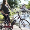 Elcykel EvoBike SPORT-8 250W 2020 - Cherry, dam