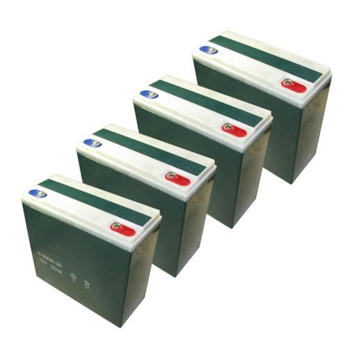 Batteriuppsättning 20Ah (48V)